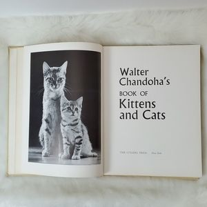 Vintage book of Kittens and Cats by Walter Chandoh